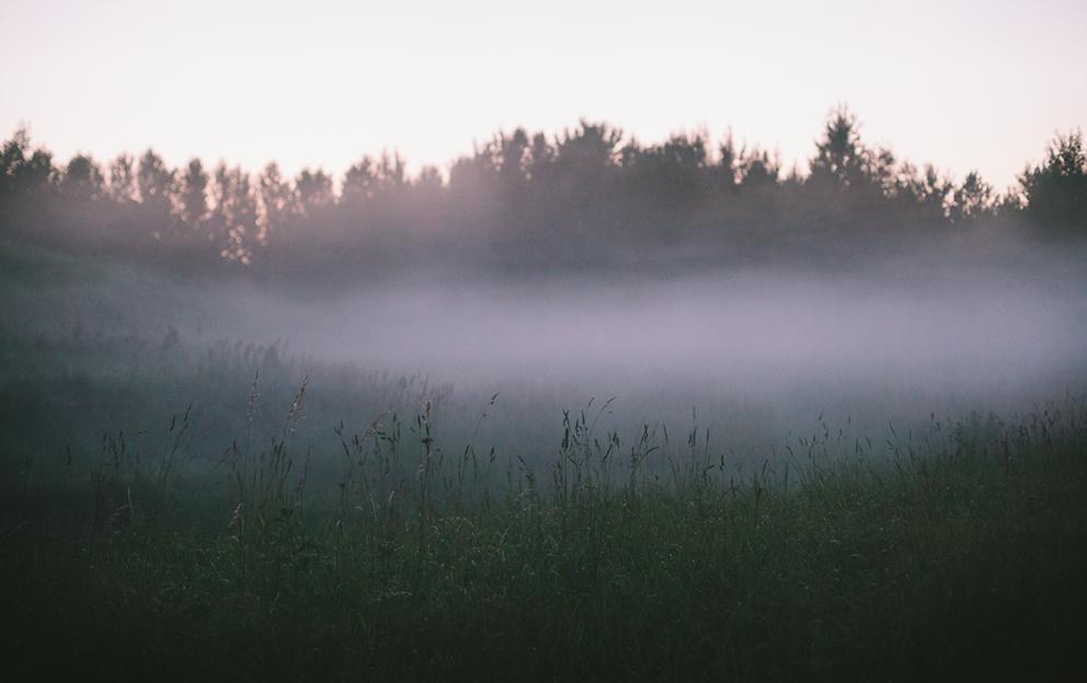 mist0219