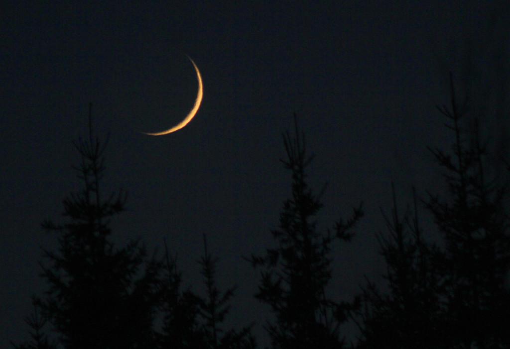 månskæra